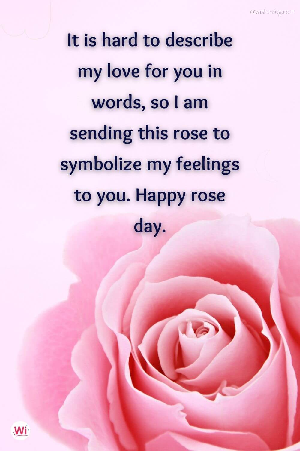 rose day messages for him