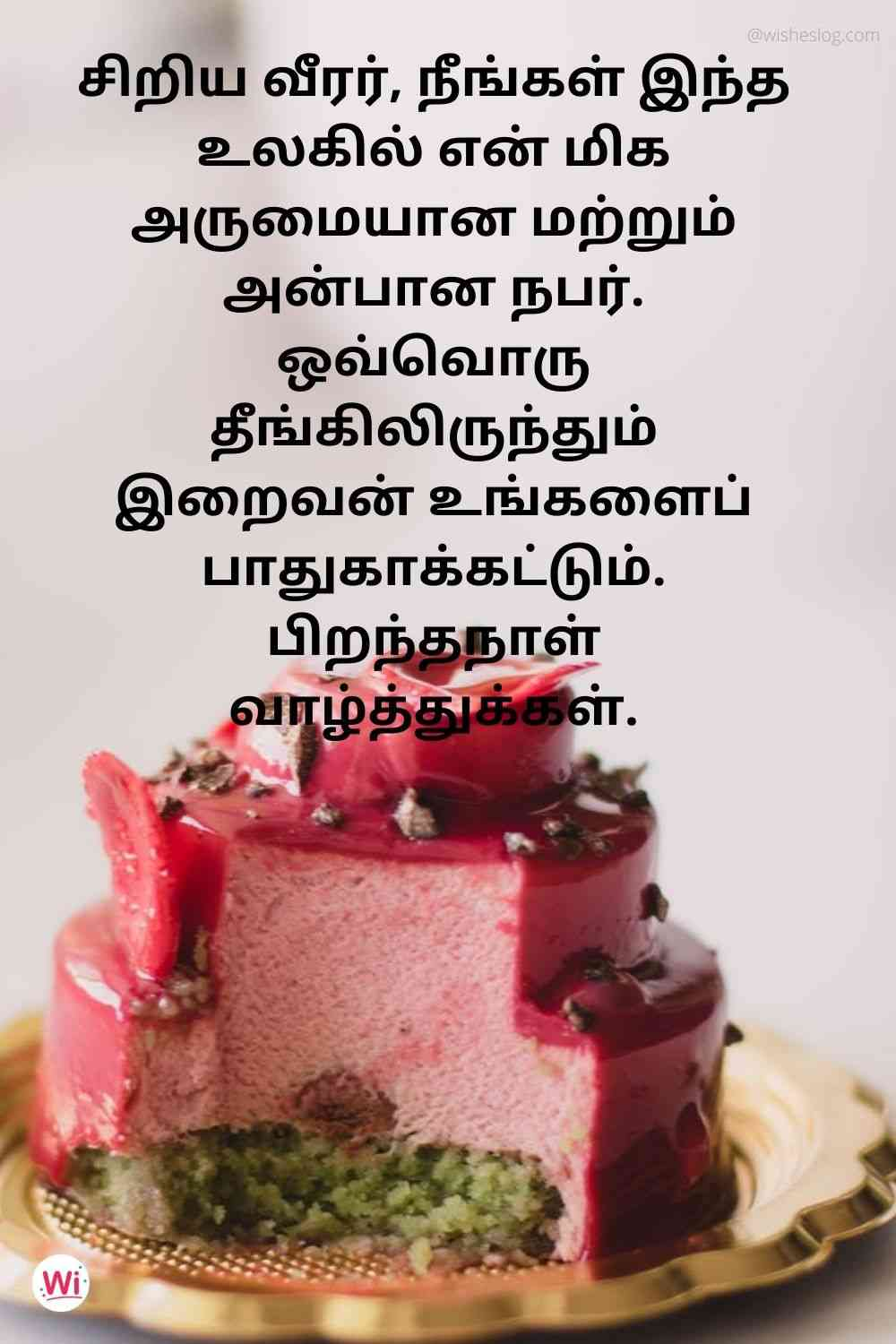 birthday wishes quotes in tamil for younger brother