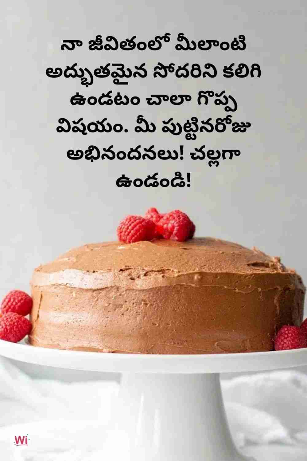birthday wishes in telugu for sis
