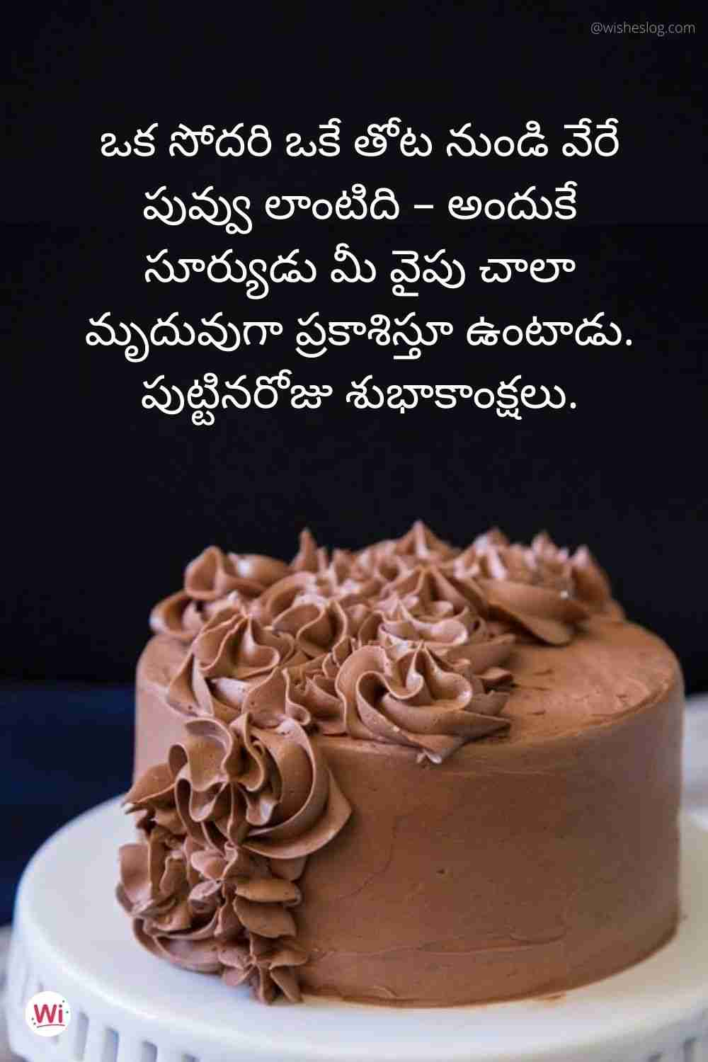 birthday wishes quotes in telugu for sister